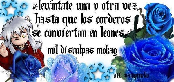 http://photo.missmoda.es/es/1/15/moy/11973.jpg